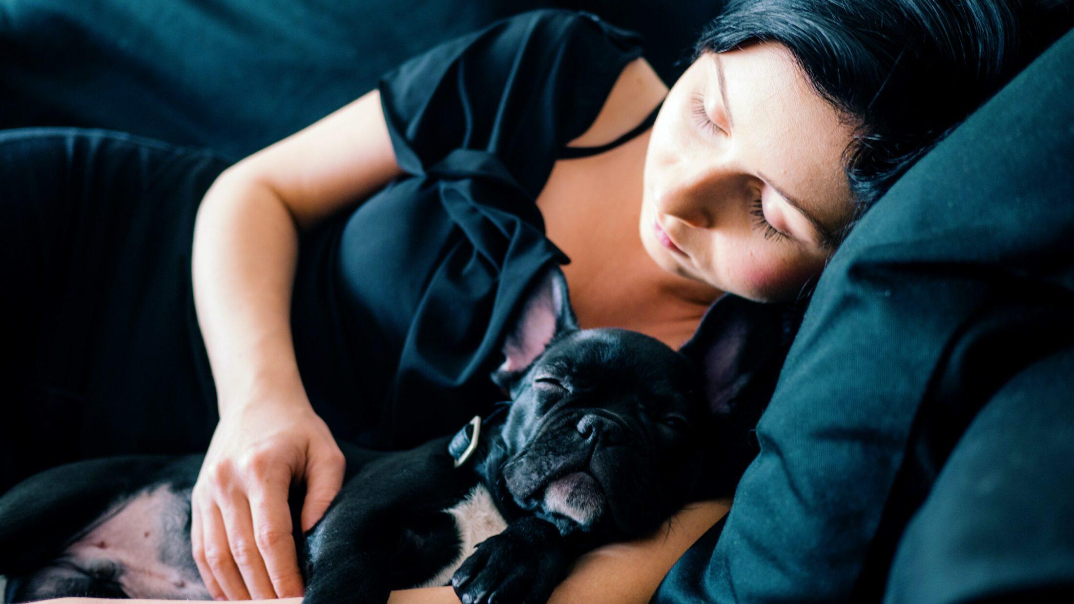 Mudanca com cachorro exige mais atenção da sua parte para com ele.