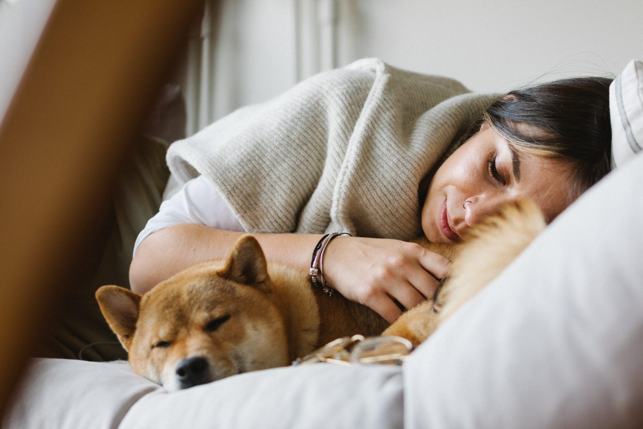 Você nunca deve incentivar o temperamento canino a ser agressivo.