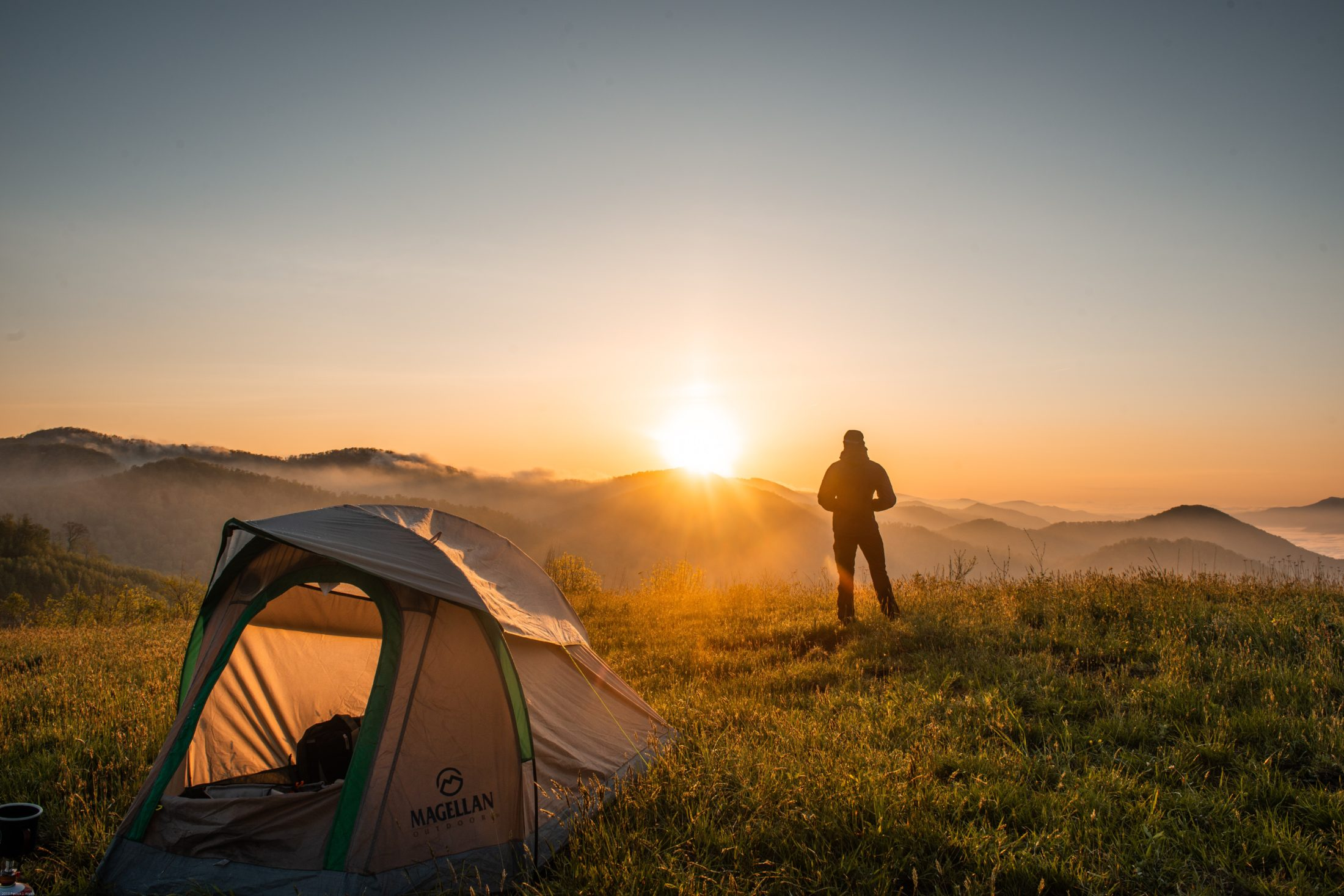 pessoa com cachoro em acampamento vendo por do sol