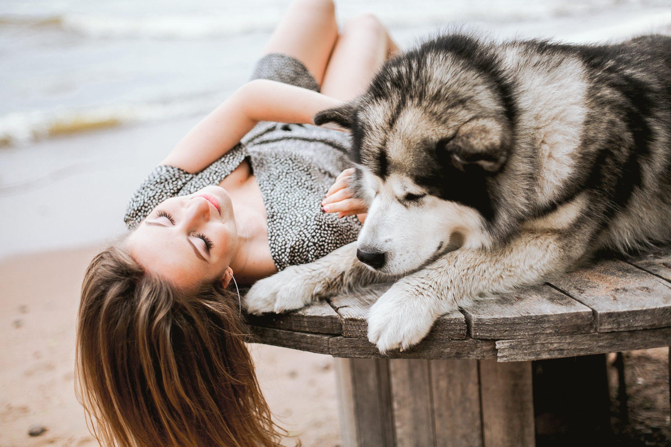 amor de cachorro é esperar pela companhia
