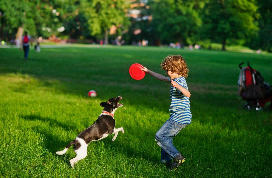 atividade-preferida-brincar
