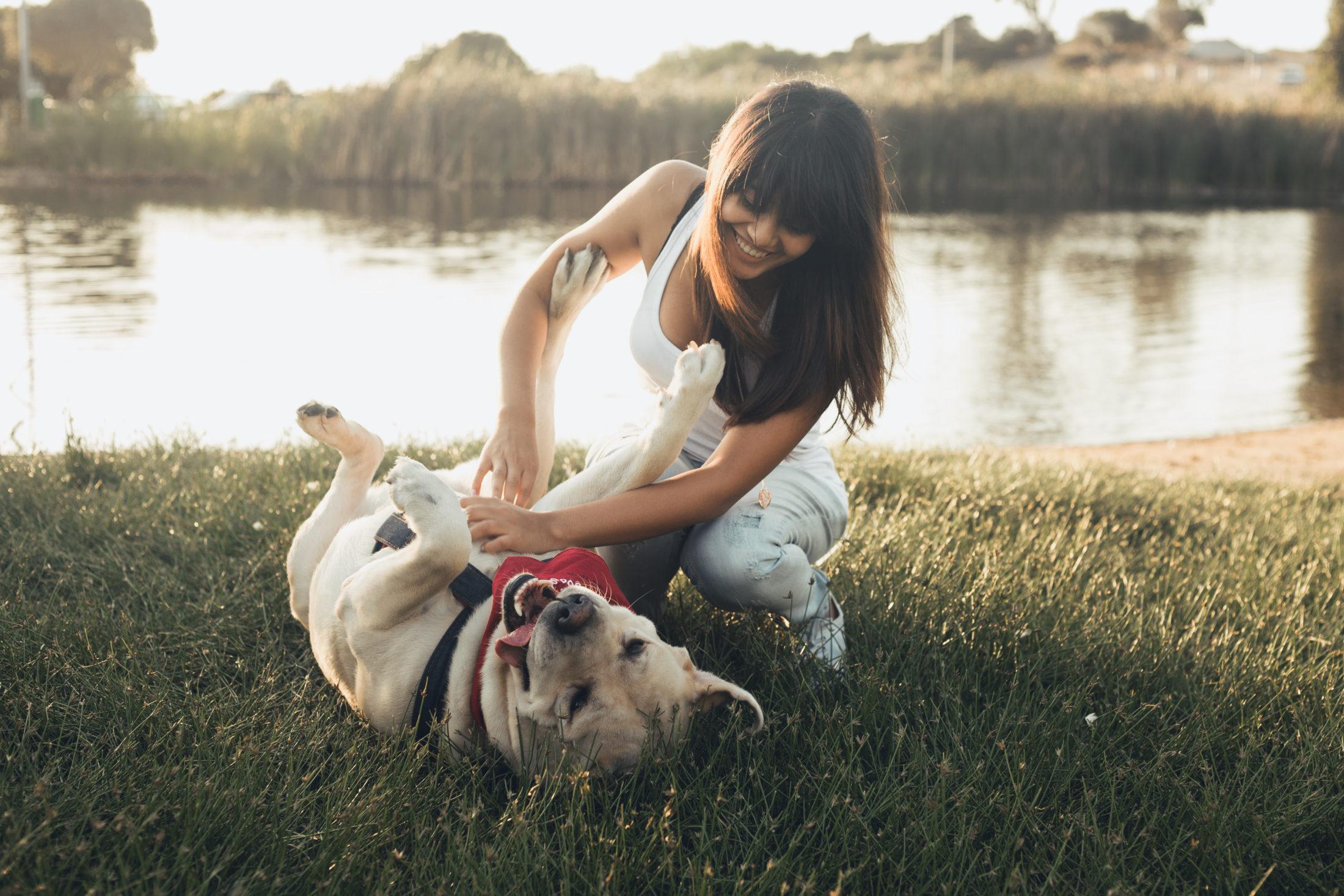 atividades para cachorro - mulher brincando com cachorro na grama