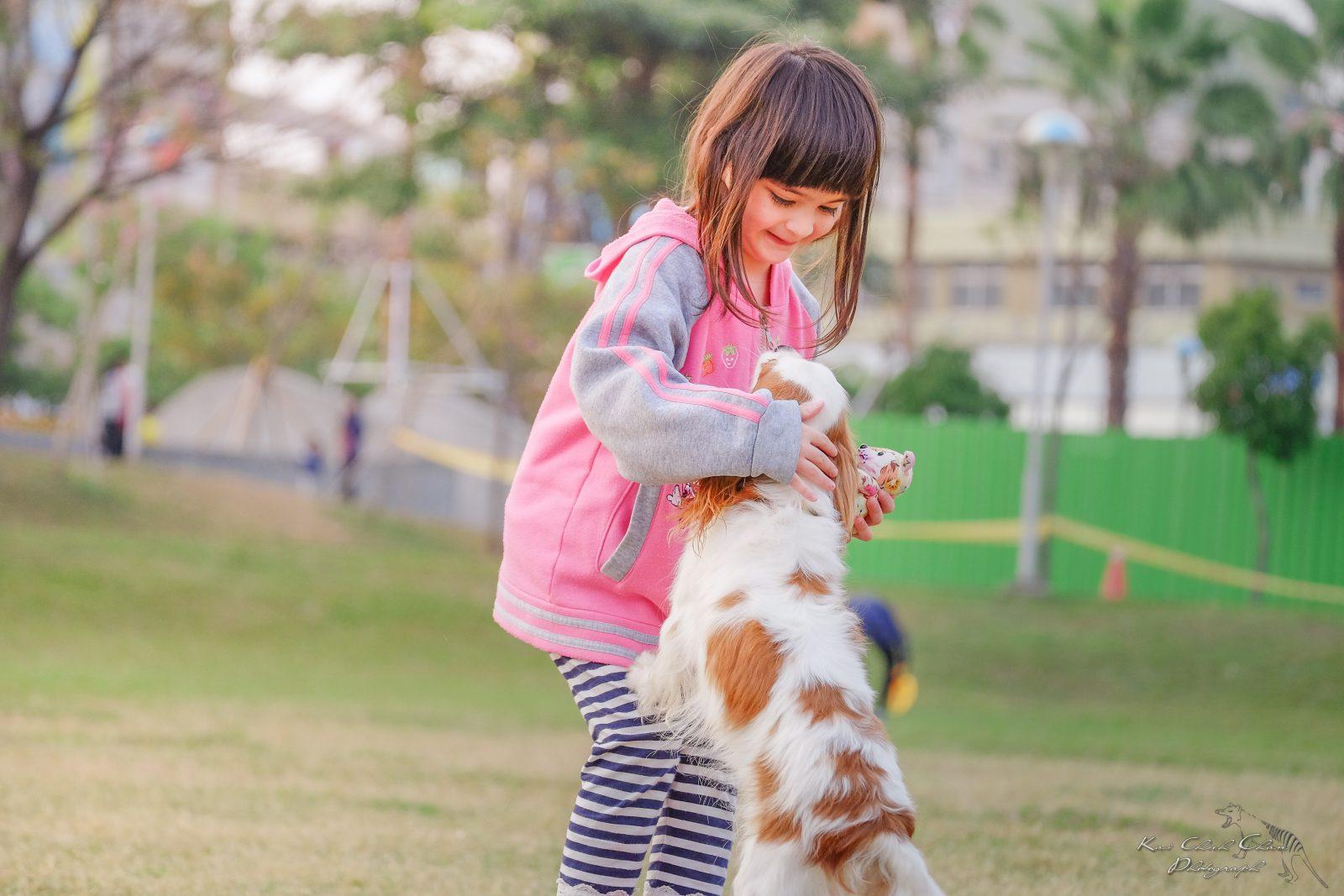 O cachorro é o bicho de estimação melhor amigo do mundo.