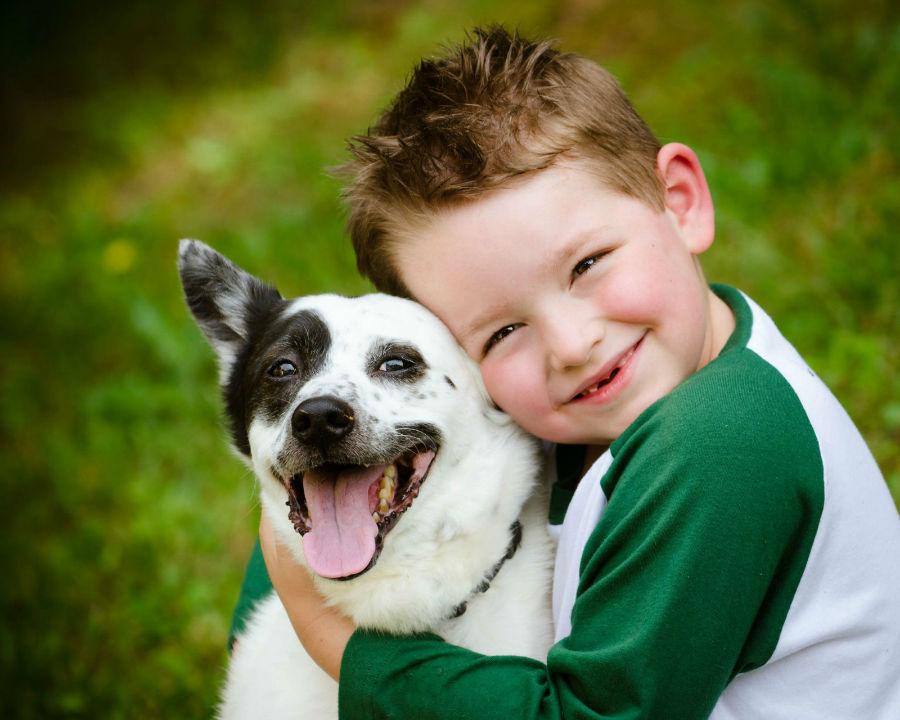 Cachorro filhote: Menino abraçado com o seu cachorro feliz da vida.