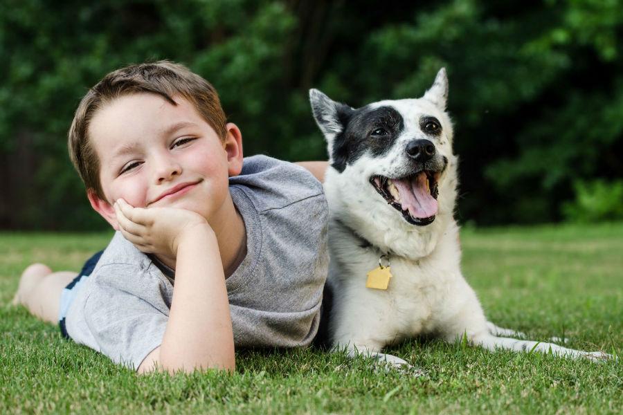 cachorro-crianca