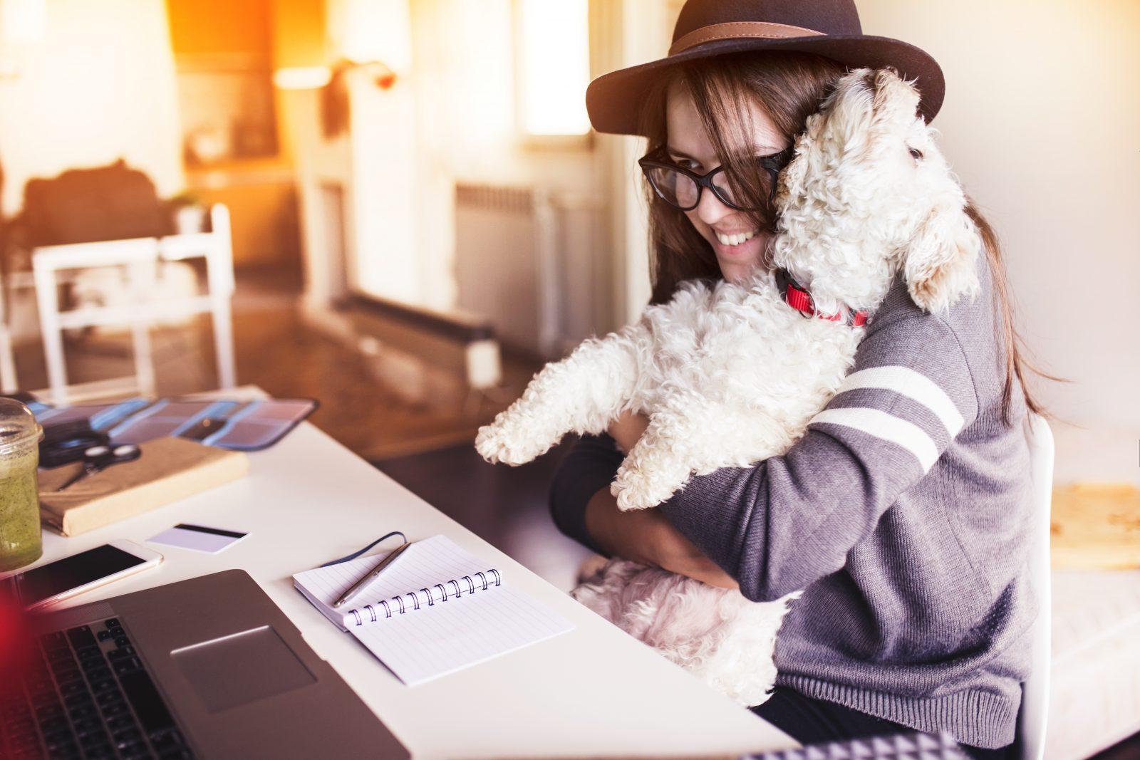 cachorro-trabalho-melhora-astral-ambiente2