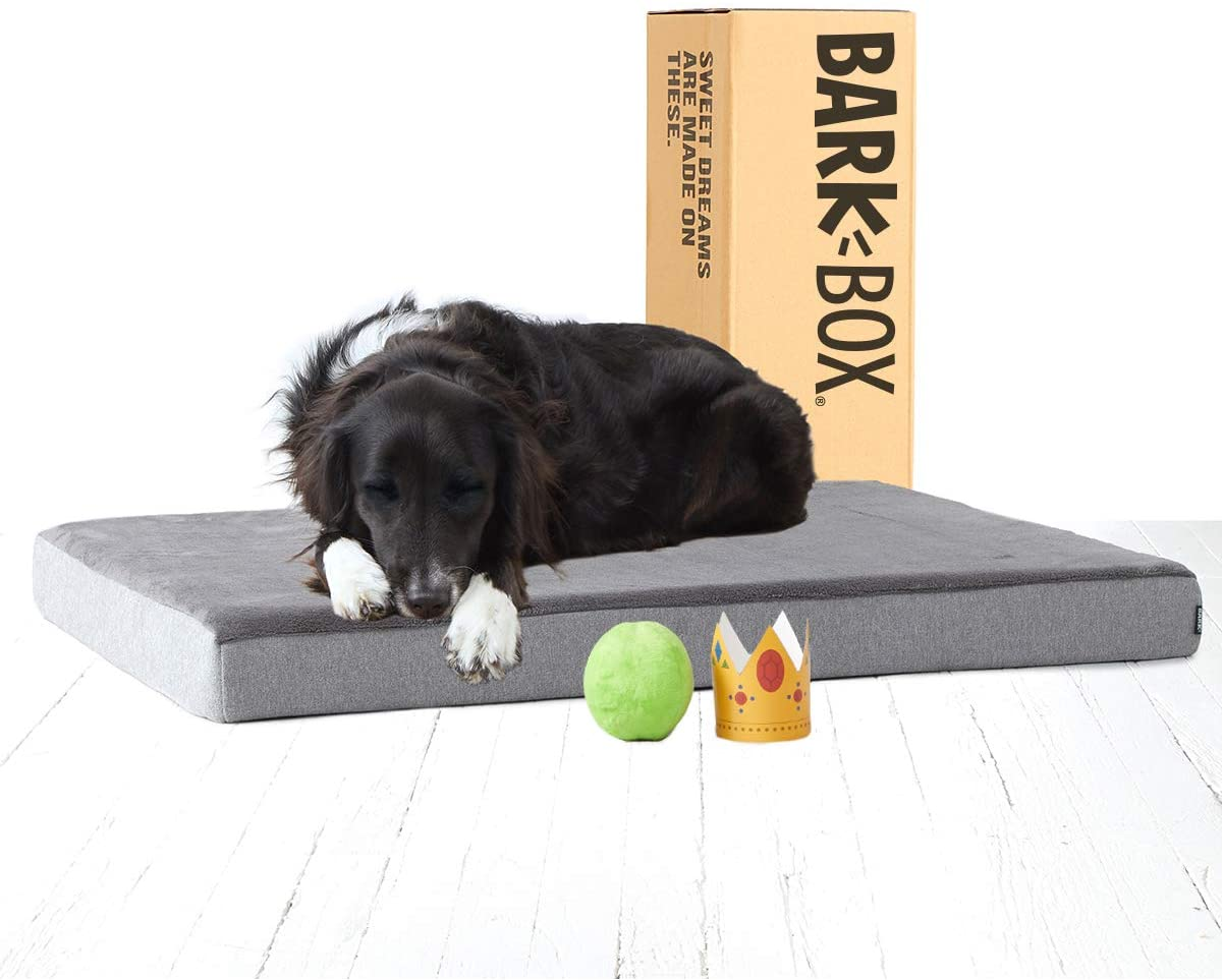 cama ortopedica bark box