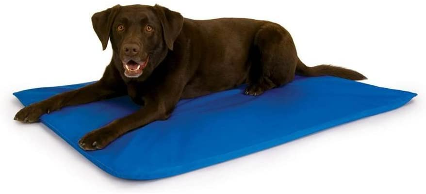 cama para cachorro keh
