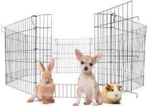 canil para cachorro ominii