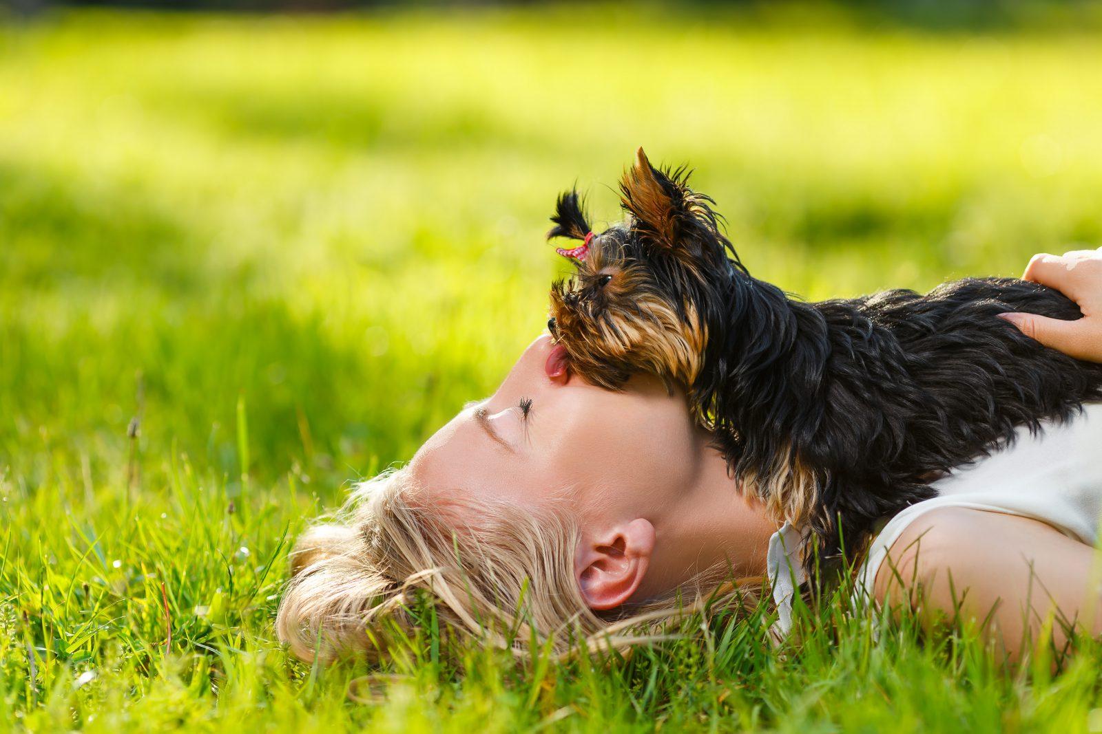 dicas-manter-cachorro-jovem-divertir