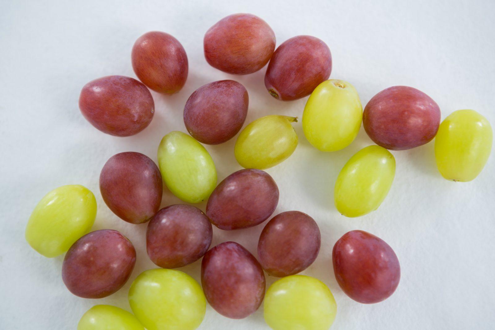 Alimentos que cachorro não pode comer: Uvas são deliciosas e nutritivas, mas podem fazer mal aos cachorros.