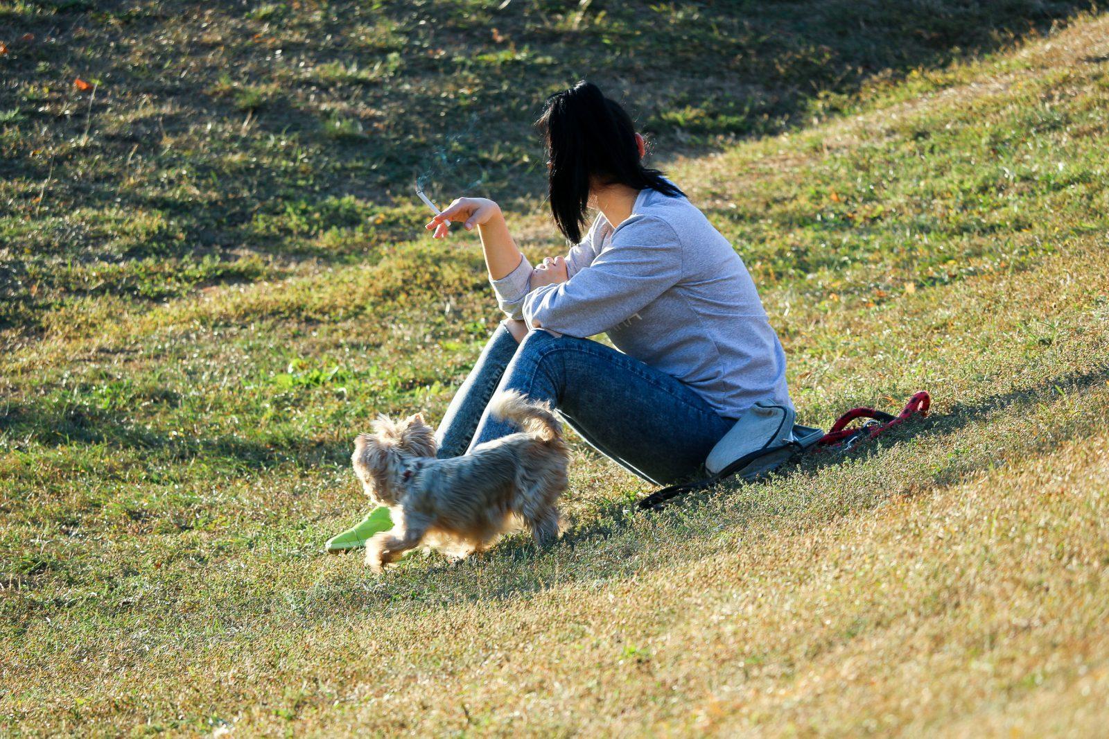 cuidar de cachorro: moça fumando cigarro sentada na grama do parque com cachorro.