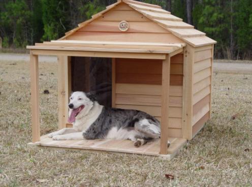 casinha para cachorro com varanda