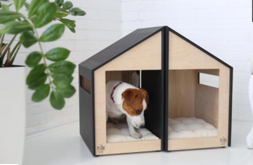 casinha de cachorro duplex