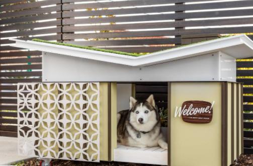 casinha de cachorro com teto invertido ecológico