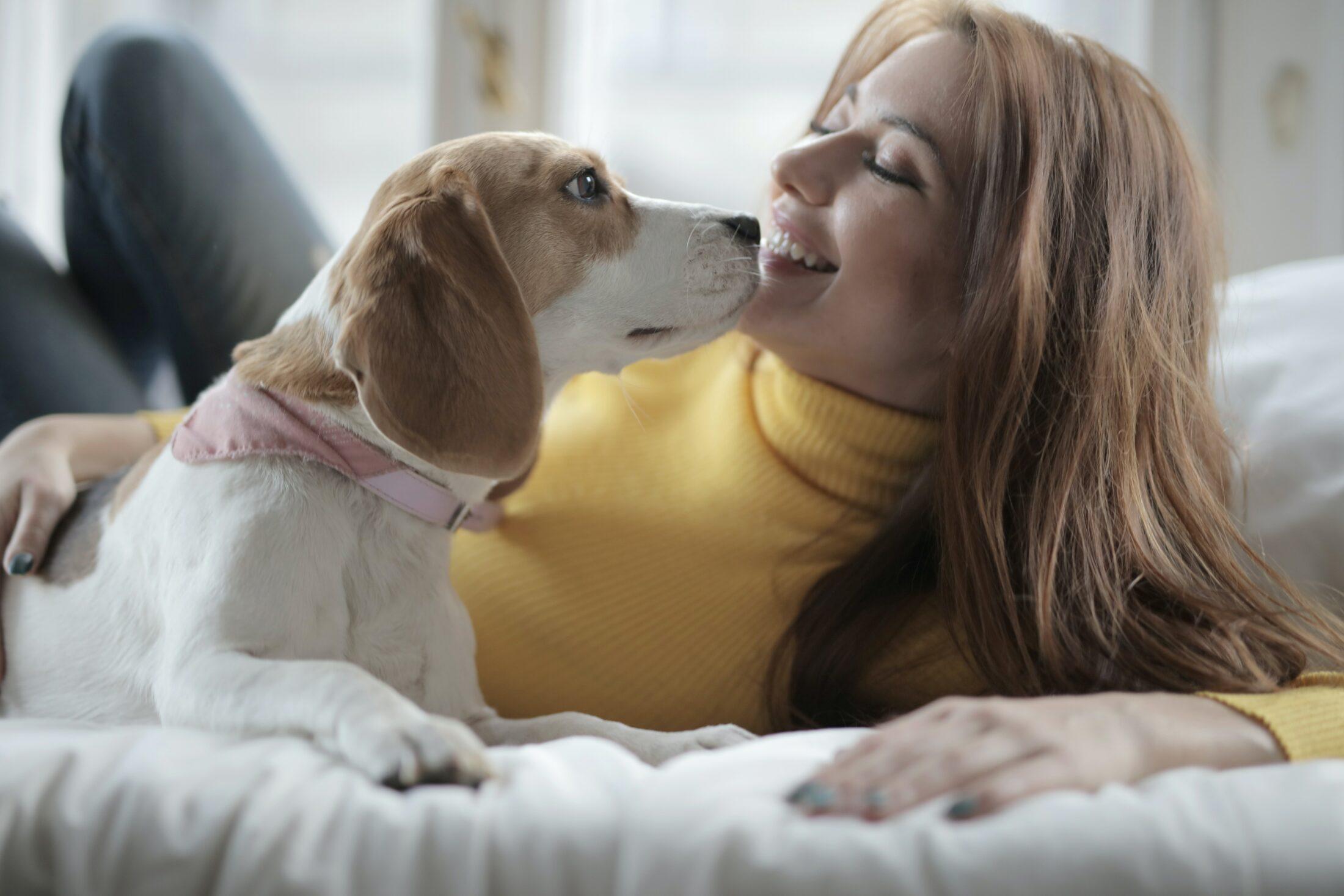 Despesas com pets inlcuem mudanças que devem ser feitas na casa.