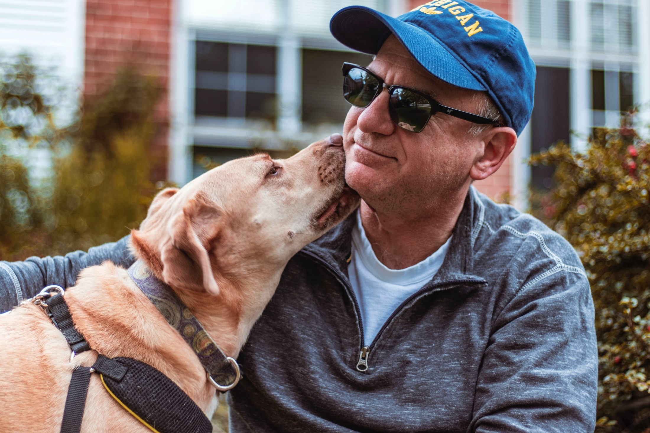 cachorro lambendo o rosto do tutor em demonstração de devoção canina