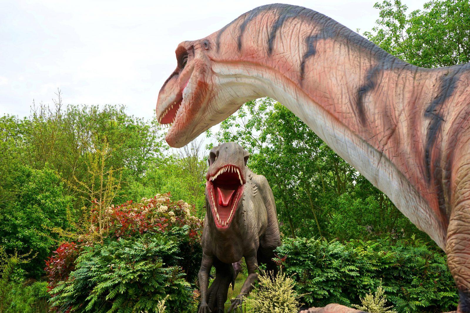 O Brasil também possui suas pesquisas sobre dinossauros.