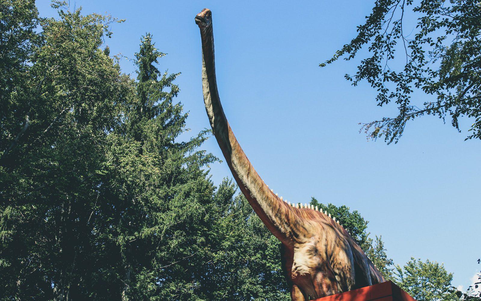 A maioria dos dinossauros são herbívoros.