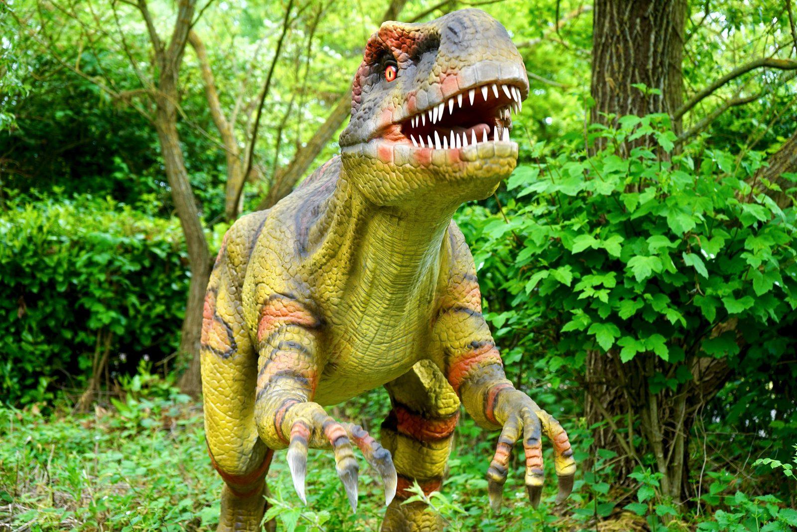 Dinossauros são animais extintos impressionantes.