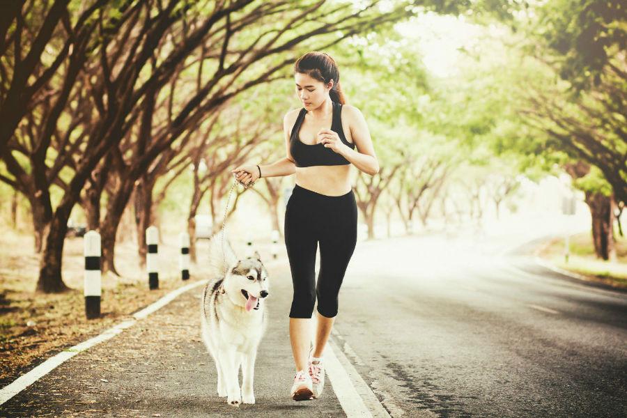 diversao-cachorro-exercicios-corrida