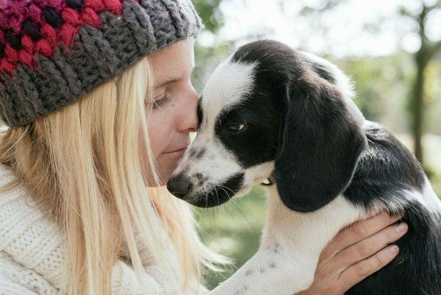 estender-longevidade-cachorro-amor