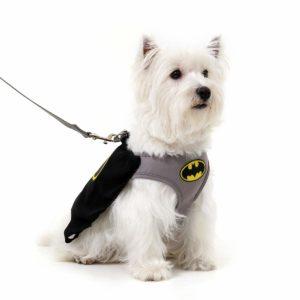 guia para cachorro batman