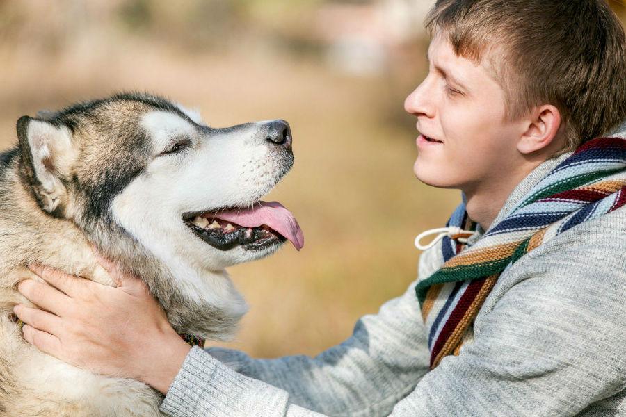 Atividades físicas para cães: Dono abraçando seu fiel Husky Siberiano