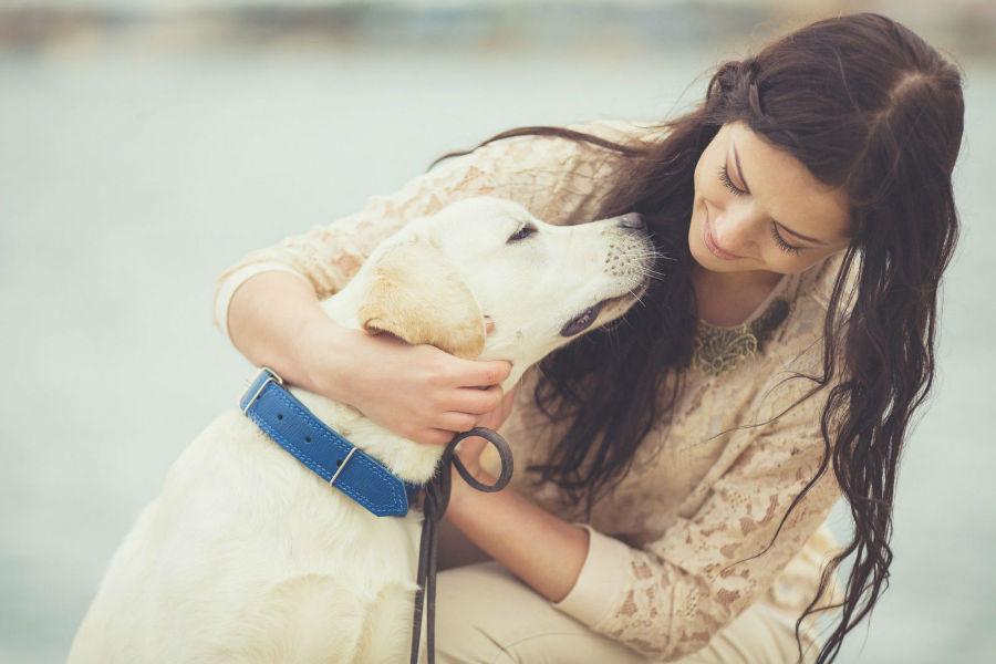 Atividades físicas para cães: Mulher e seu Labrador retriever amarelo estreitando laços após caminada juntos