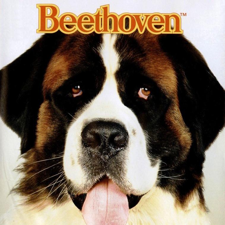 Nomes de cachorro: Beethoven