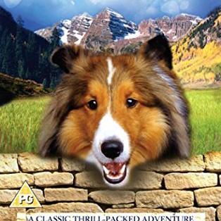 Nomes de cachorro: Lassie