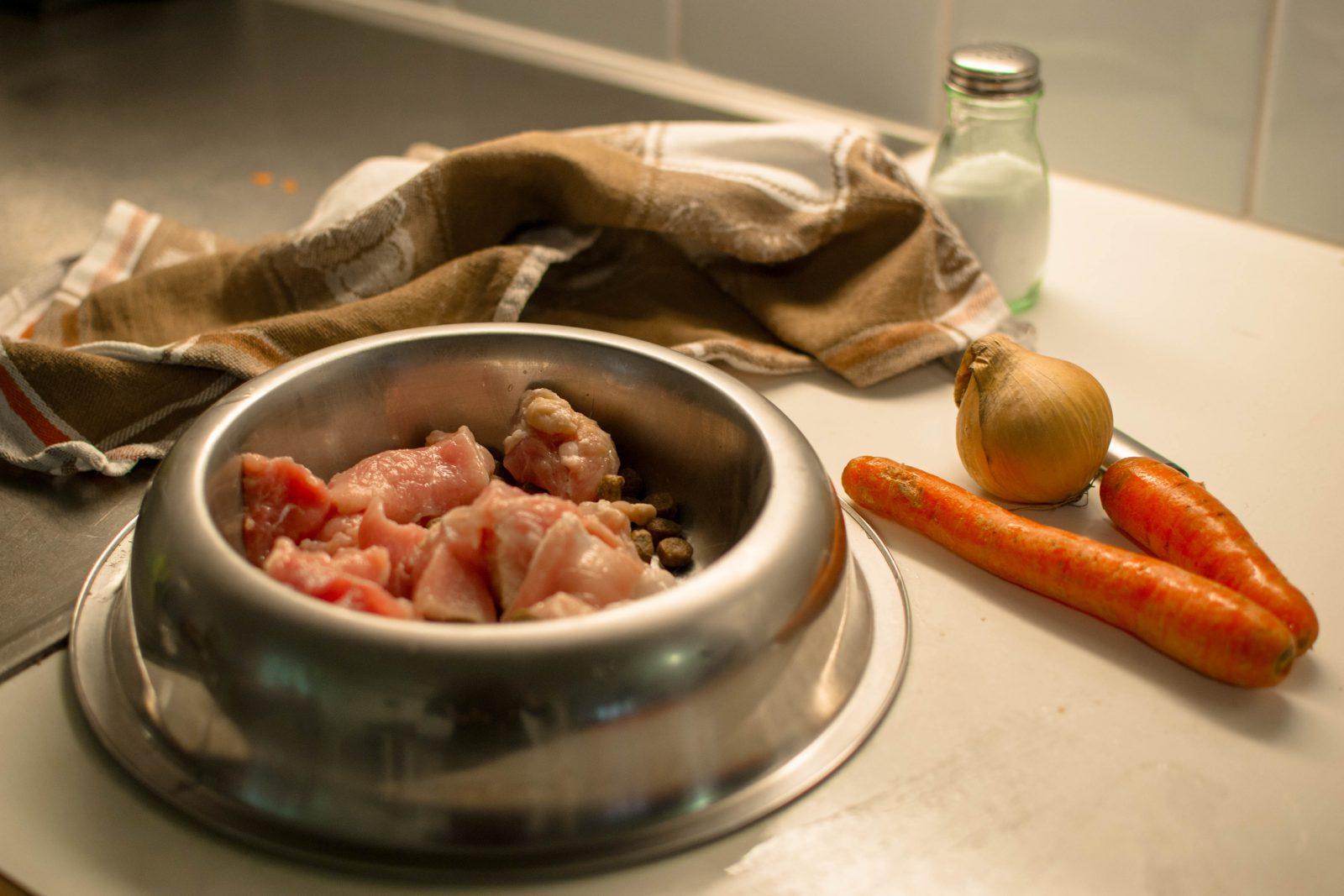 Ração para cachorro: opções de alimentos caseiros na pia para variar dieta.