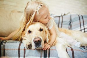 Cachorros de raça: Menina abraçado ao seu Golden retriever no sofá.