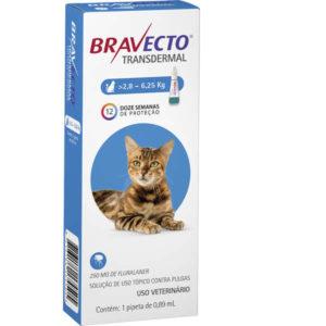 remedio de pulgas para gato Bravecto