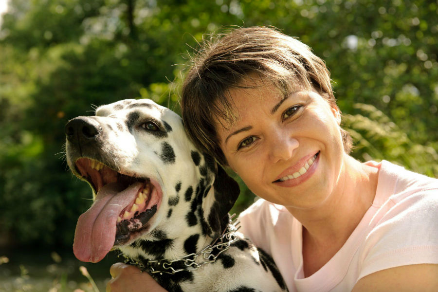Coleira pra cachorro: Dona e seu Dálmata usando coleira enforcadora